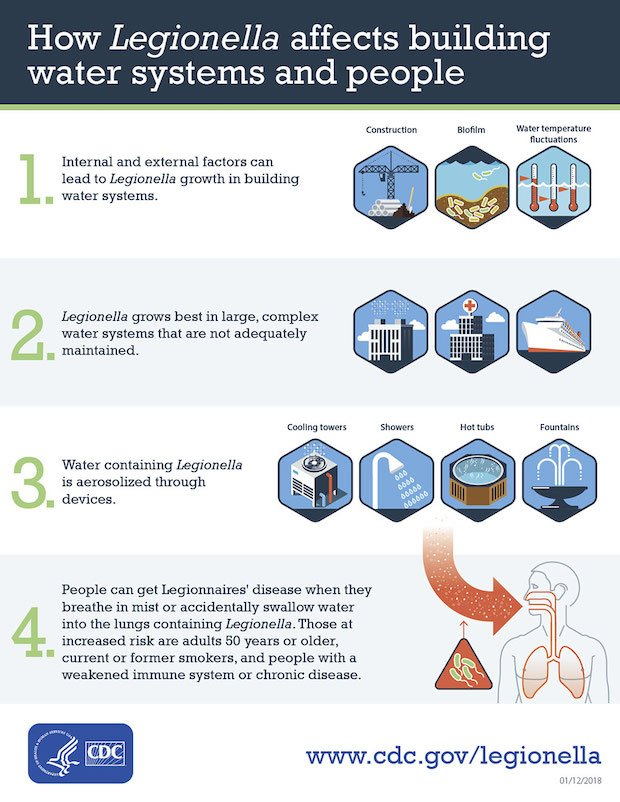 CDC illustration of how Legionella bacteria affects water systems