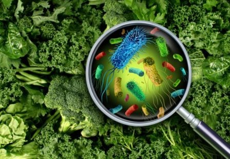 cyclospora food poisoning from produce