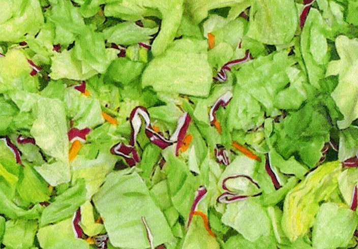 Cycylospora lawyer- iceberg salad greens with shredded carrots and red cabbage